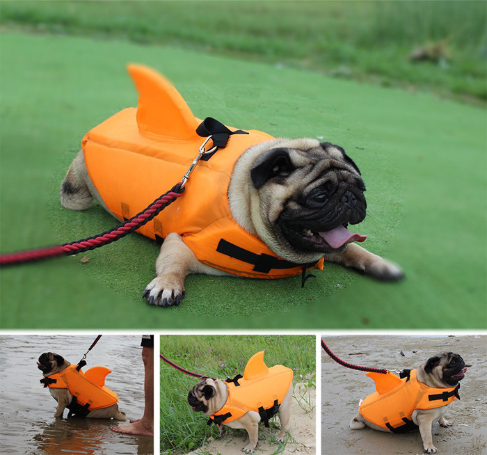 shark fin life jacket for dogs orange