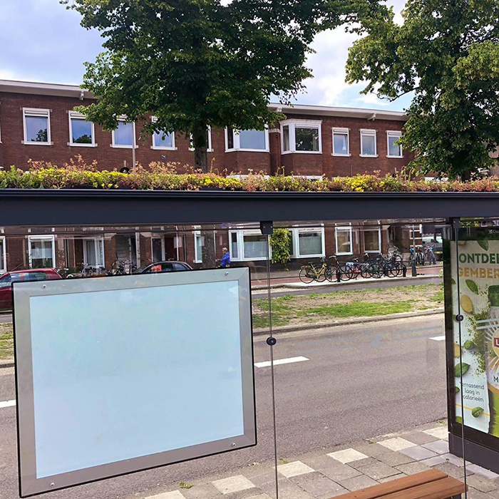 side view city in netherlands transforms bus stops into bee stops utrecht