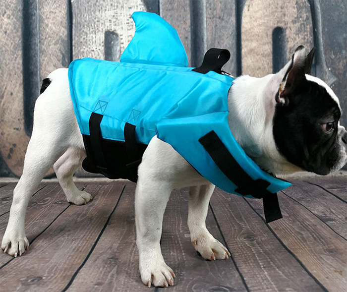 snik-s shark fin life jacket for dogs