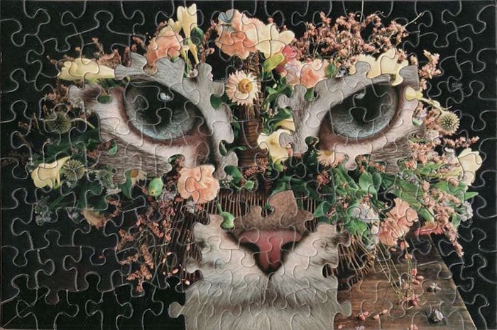 tim klein montage puzzle art daisy bindi