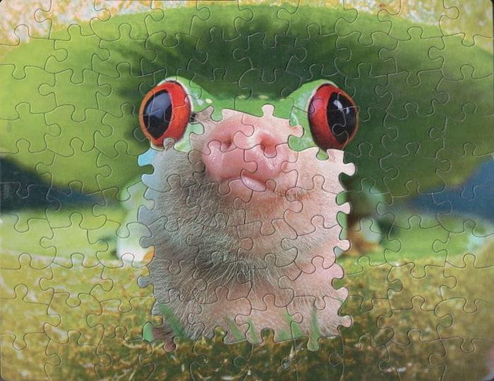 tim klein montage puzzle art pig jaw suzzle 1