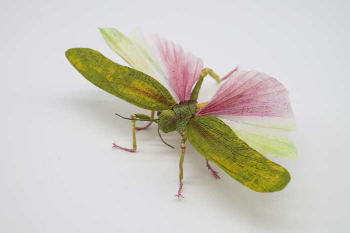 tina kraus crepe paper objects giant grasshopper wings