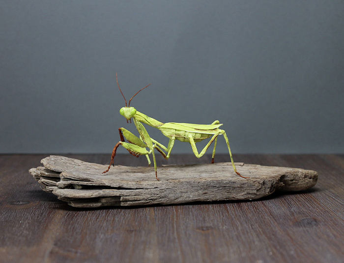 tina kraus crepe paper objects green mantis