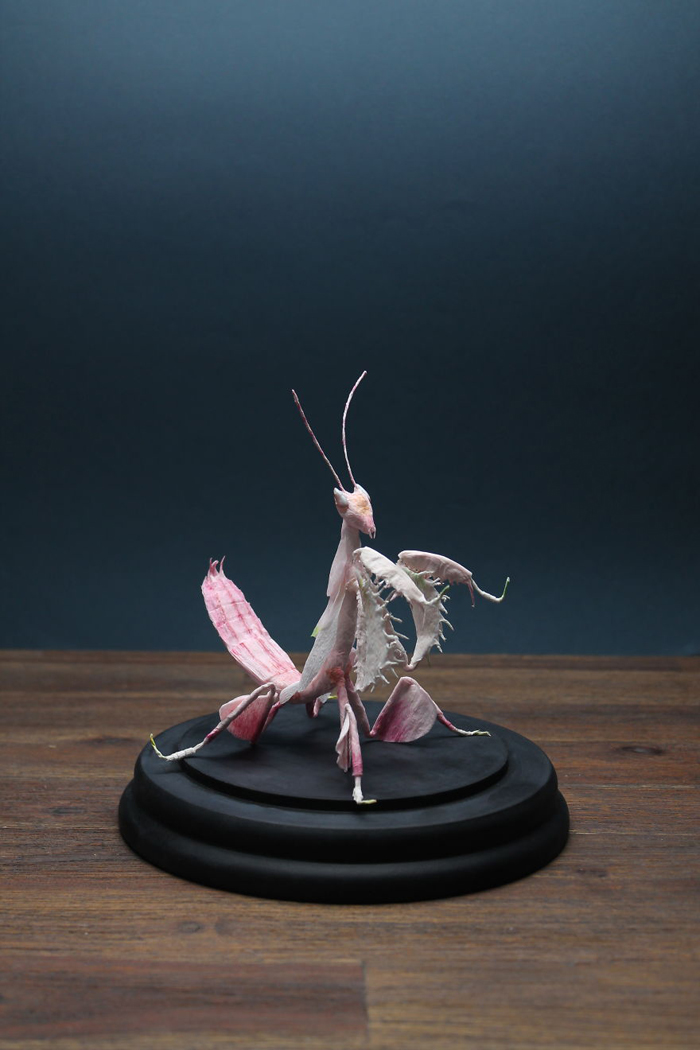 tina kraus crepe paper objects orchid mantis