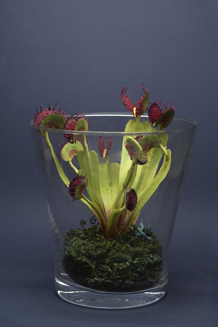 tina kraus crepe paper objects venus flytrap