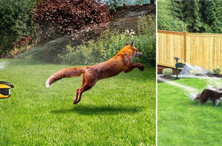 Animal Sprinkler Repeller