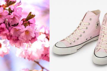 Converse Sakura Sneakers