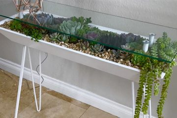 Succulent Garden table