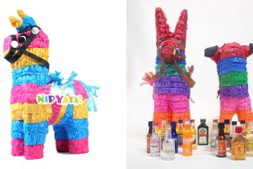 alcohol bottles pinata