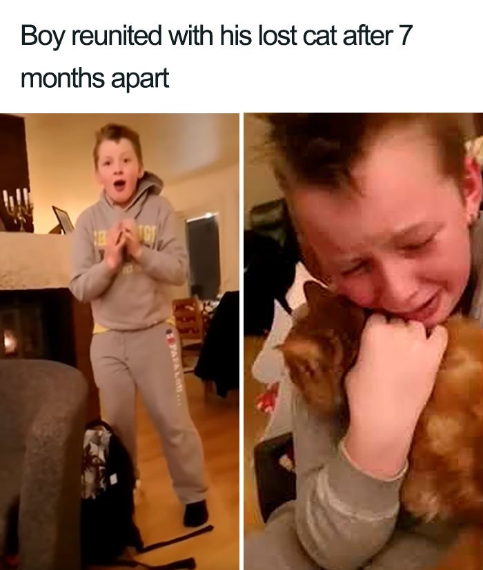 boy reunited with lost cat wholesome cat posts