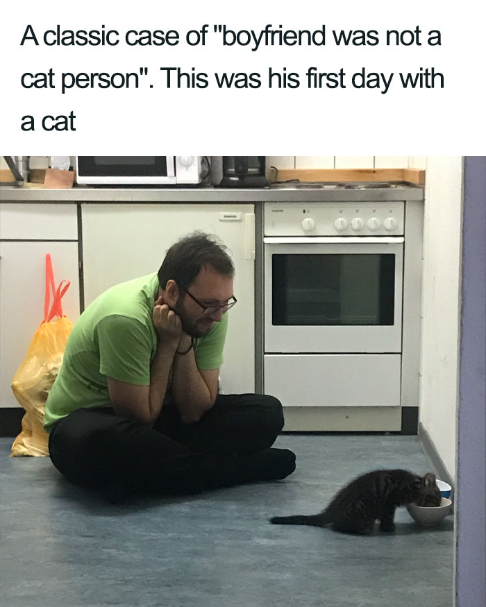 boyfriend not a cat person before wholesome cat posts