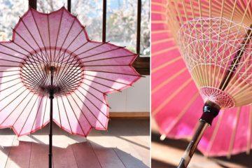 cherry blossom parasol