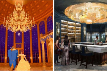 comparing the cartoon disney world beauty and the beast bar grand floridian