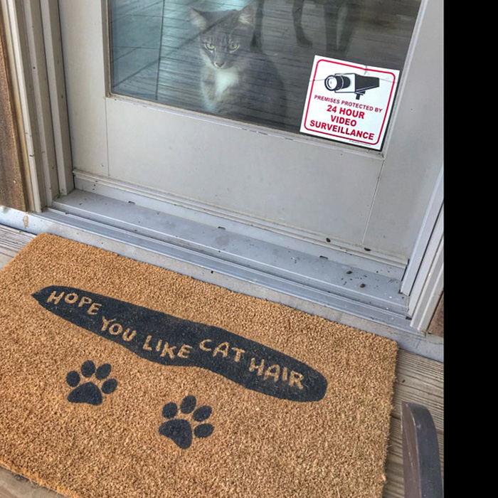 custom design doormat etsy cat hair