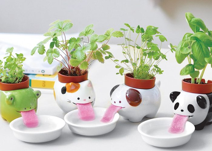firebox drinking animal planters
