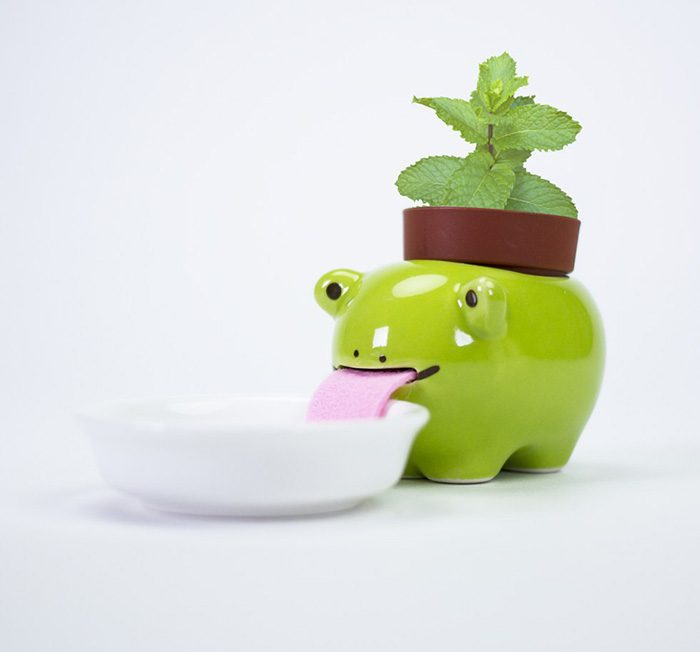 firebox drinking animal planters frog