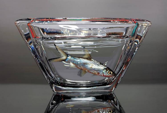 fish in bowl young sung kim hyperrealism