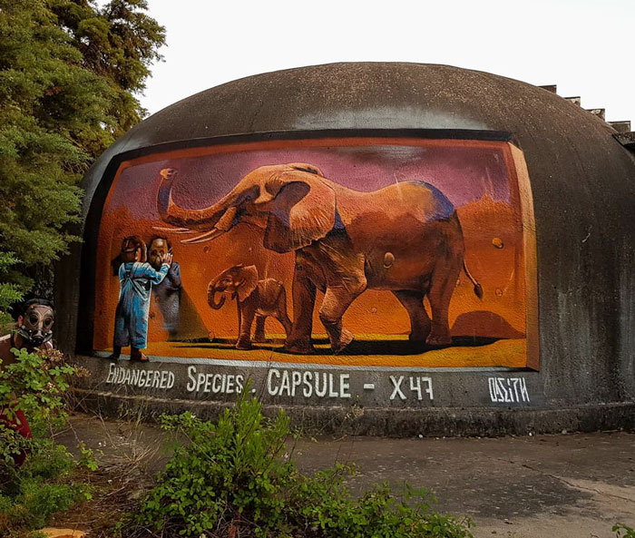 odeith jaw-dropping 3d street art elephant capsule