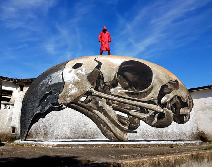 odeith jaw-dropping 3d street art giant bird skull
