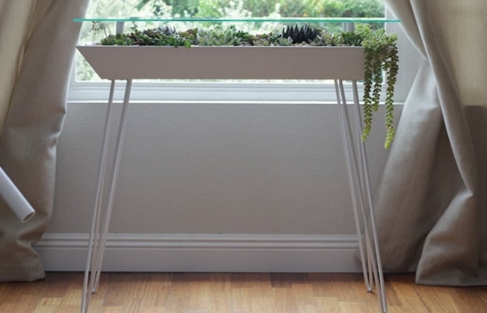 placing bloomingtables by the window for natural sunlight
