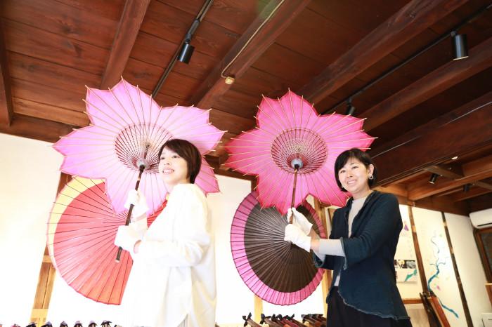 sakura-shaped parasol cherry blossom season