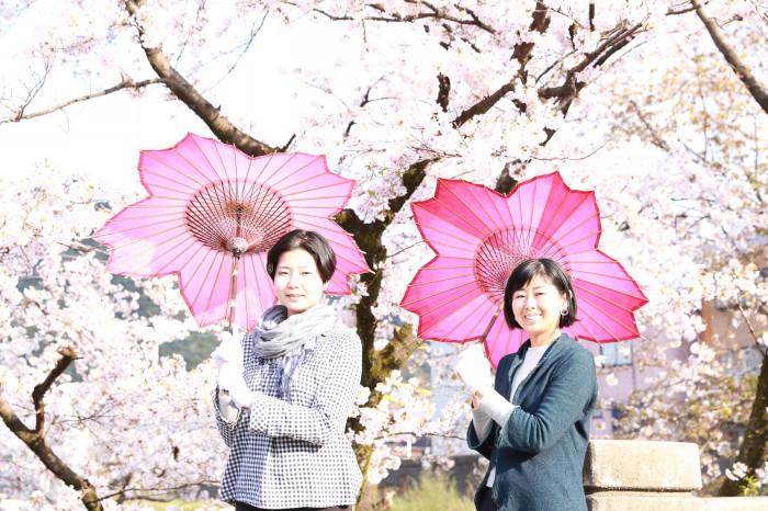sakura-shaped parasol japan