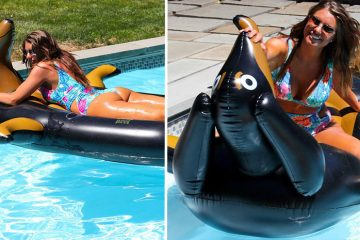 sausage dog pool float