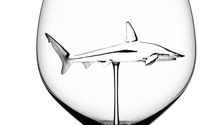 shark wine glasses behance