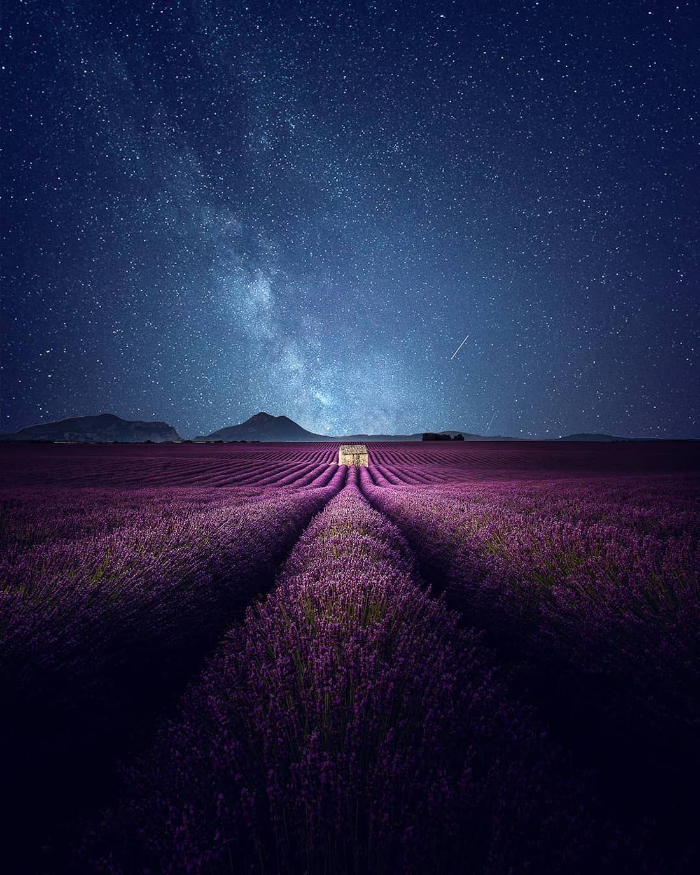 starry night lavender video samir belhamra