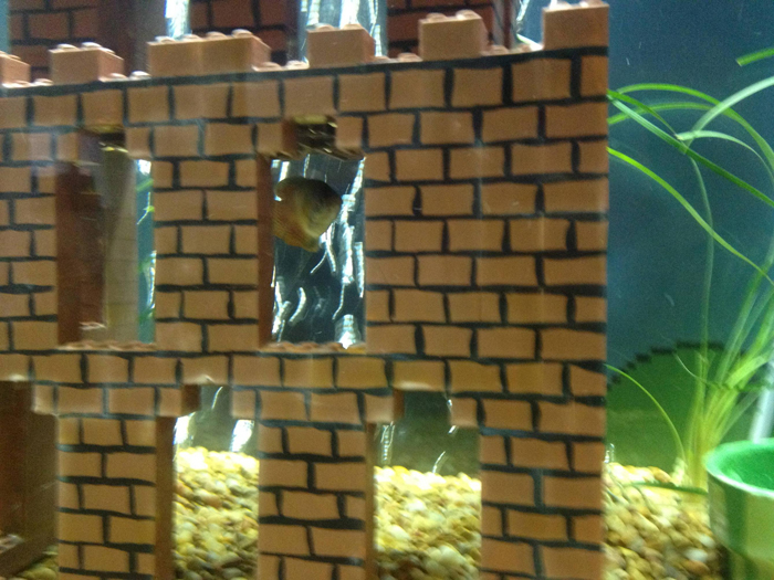 super mario aquarium castle brick