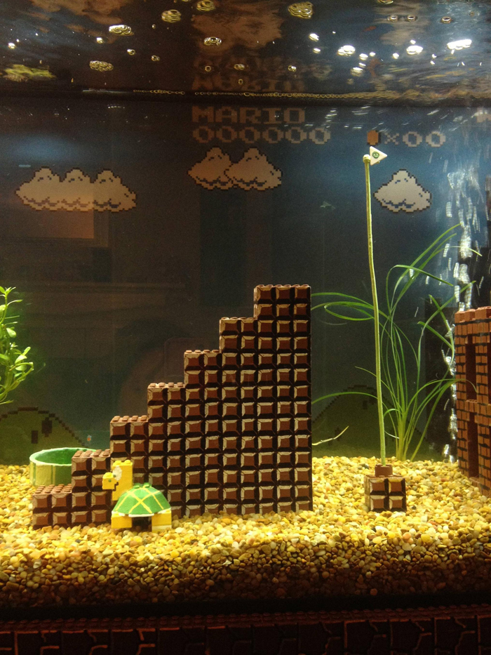 super mario aquarium climbing tower