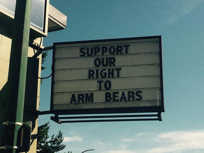 support our right to arm bears funny meanwhile in canada pictures