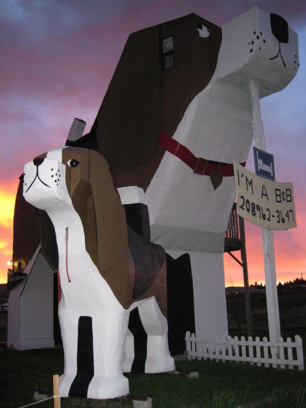 toby small beagle shaped hotel dog bark park inn
