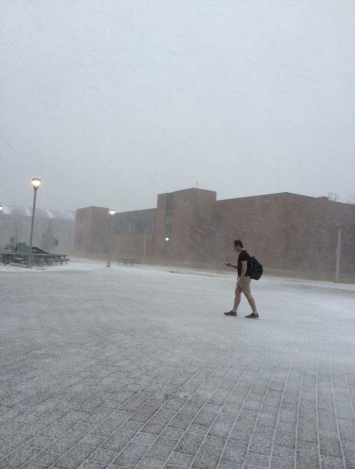 walking to class funny meanwhile in canada pictures