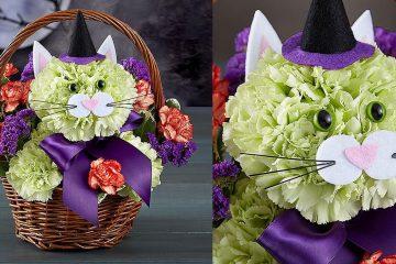 Cat Bouquets