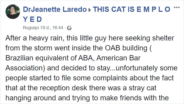 Dr. Jeanette Laredo Announcement About Lawyer Cat