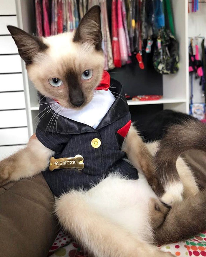 "Dr Leon in his ""uniform"""
