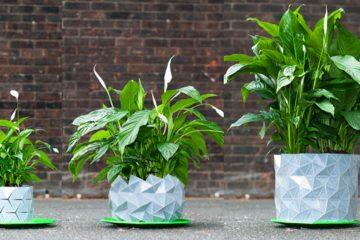 Shape-Shifting Origami Planter
