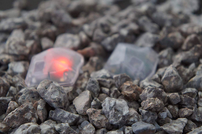 baketan reiseki ghost-detecting stone red light