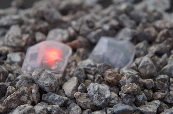 baketan reiseki ghost-detecting stone red light