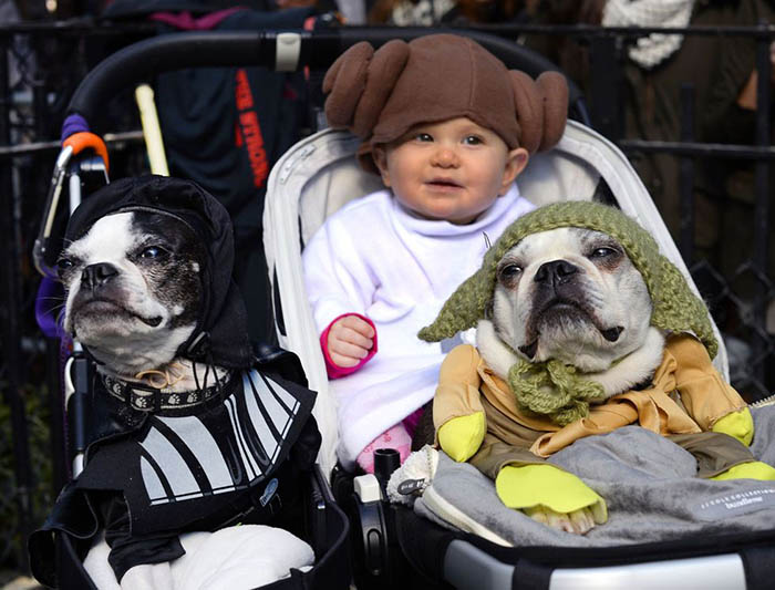 Darth Vader and Yoda Dog Costume