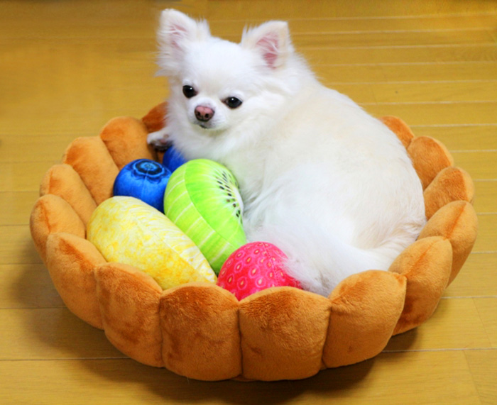 felissimo fruit tart cat bed for small dogs