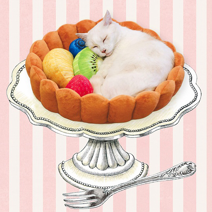 fruit tart cat bed felissimo