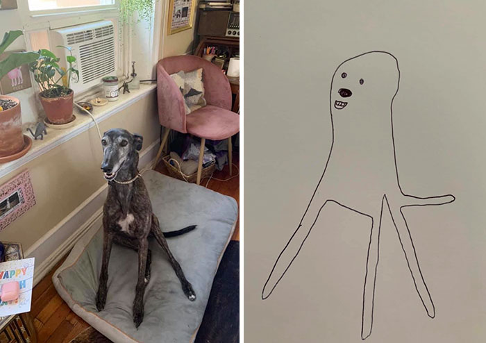 jay cartner flat dog doodles awful drawings