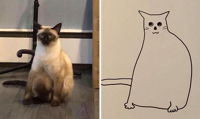 jay cartner flat dog doodles chubby cat