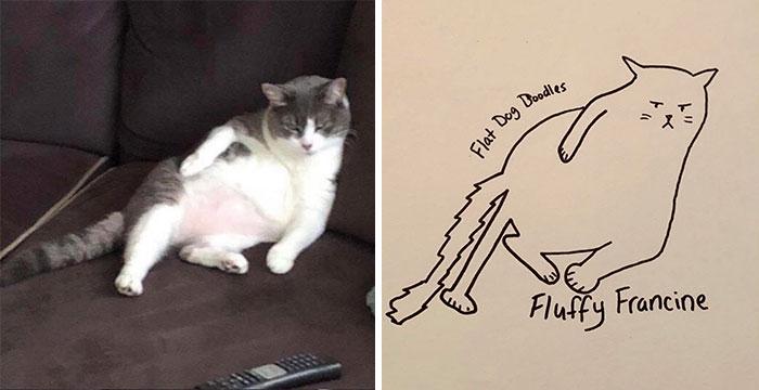 jay cartner flat dog doodles francine cat