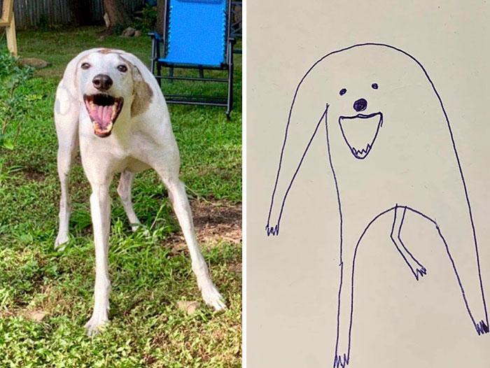 jay cartner flat dog doodles goofy stanley