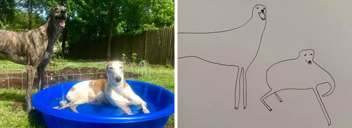 jay cartner flat dog doodles greyhounds