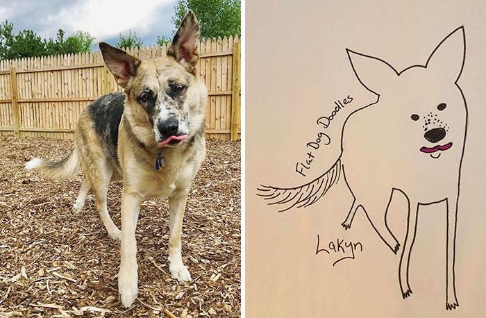 jay cartner flat dog doodles lakyn