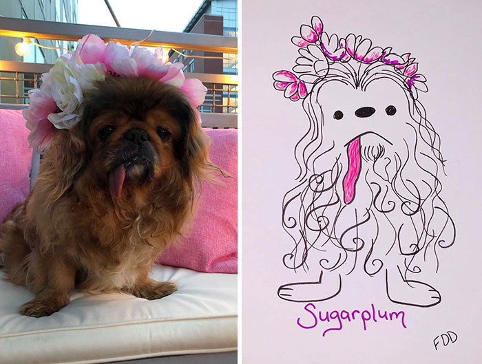 jay cartner flat dog doodles sugarplum